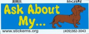 10″ x 3″ Ask about Dachshund Dog art Bumper Sticker Decal Window Stickers Decals
