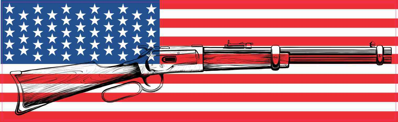 American Flag With Gun