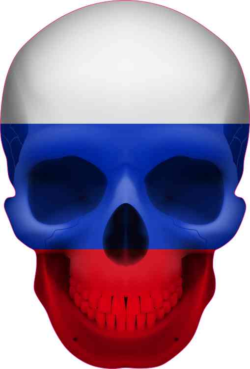 Russian Flag Skull bumper sticker