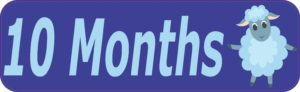 month sticker