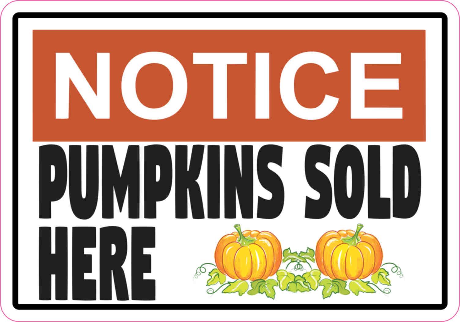 pumpkins sold here