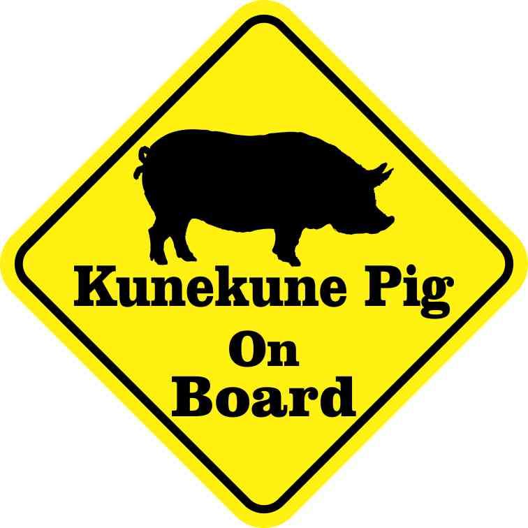 Kunekune Pig On Board Sticker
