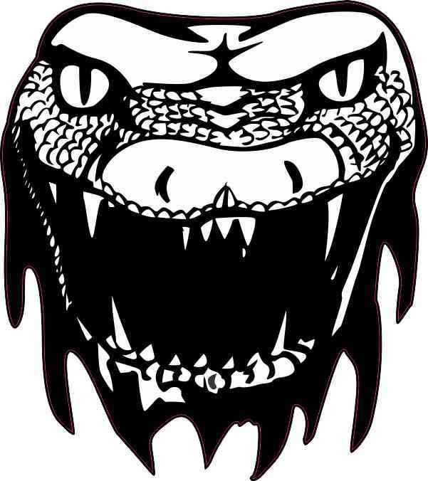 Snake Head Sticker