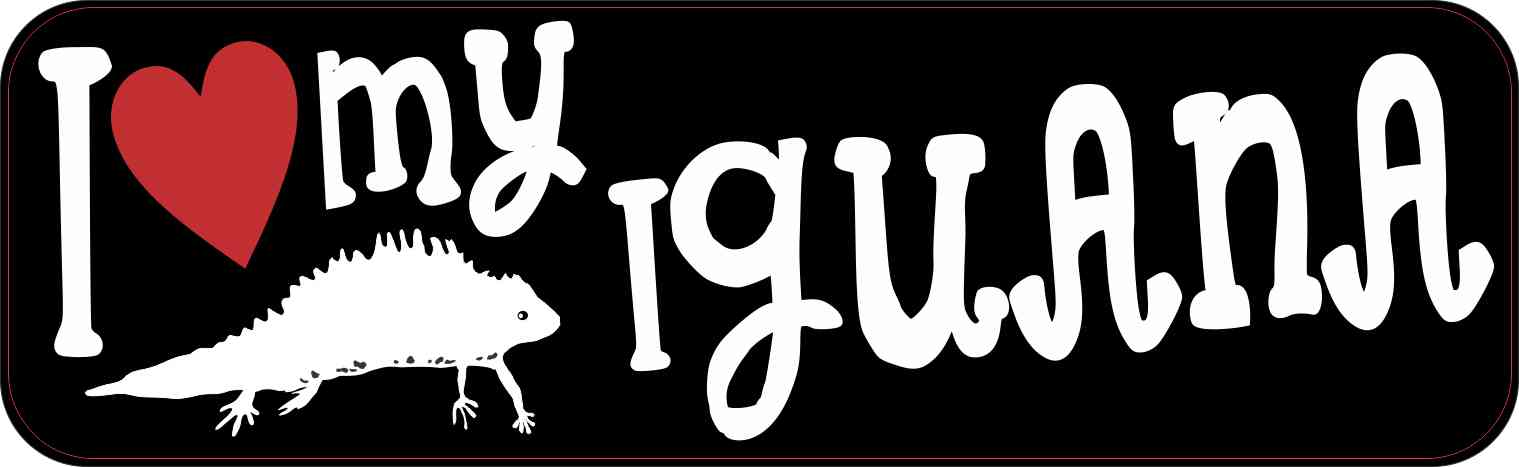 I Love My Iguana Bumper Sticker