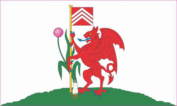 Cardiff Flag Sticker