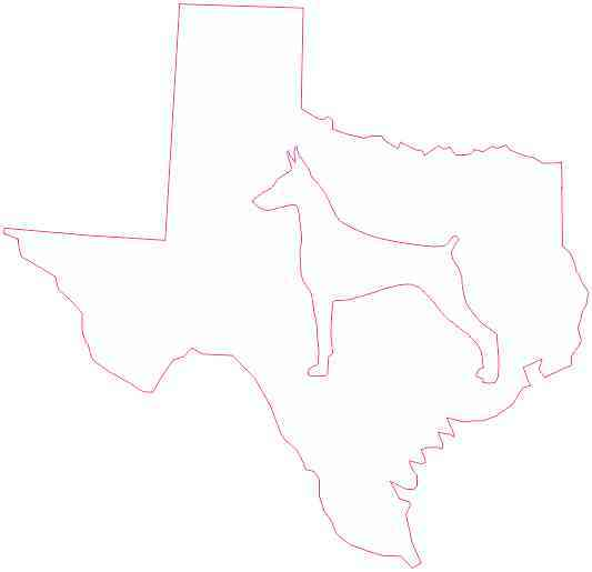 White Texas Doberman Sticker