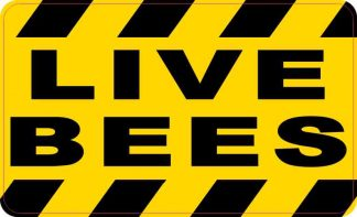Live Bees Magnet