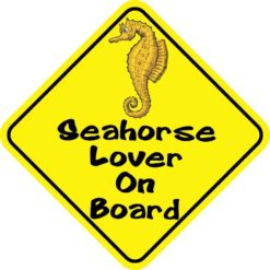Seahorse Lover On Board Magnet