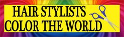 Hair Stylists Color the World Magnet