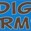 I Dig Worms Magnet