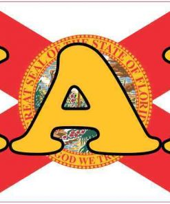 Florida Flag Miami Magnet