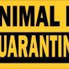 Animal in Quarantine Magnet