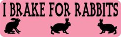 I Brake for Rabbits Vinyl Sticker
