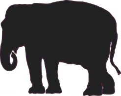 Elephant Silhouette Vinyl Sticker